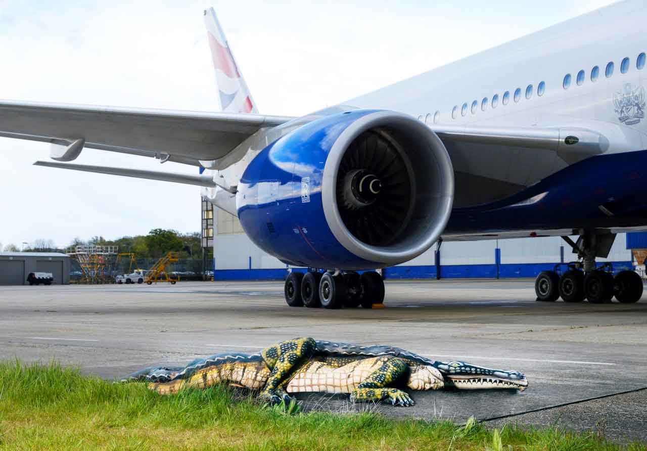 Alligator spotted as British Airways Orlando flight departs from Gatwick