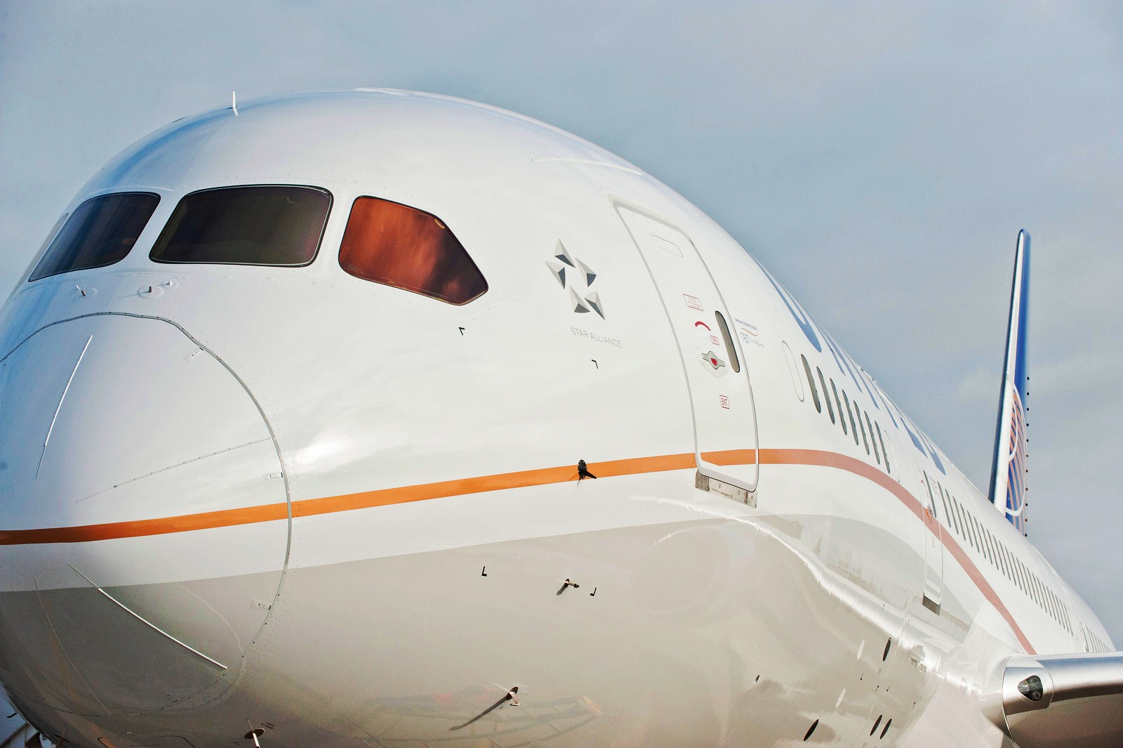Video United Show First Boeing 787 Dreamliner Livery And